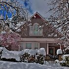 Mauve In The Snow by K D Graves Photography