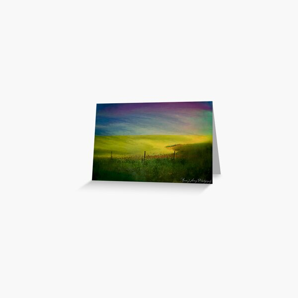 Canola Dreams Greeting Card
