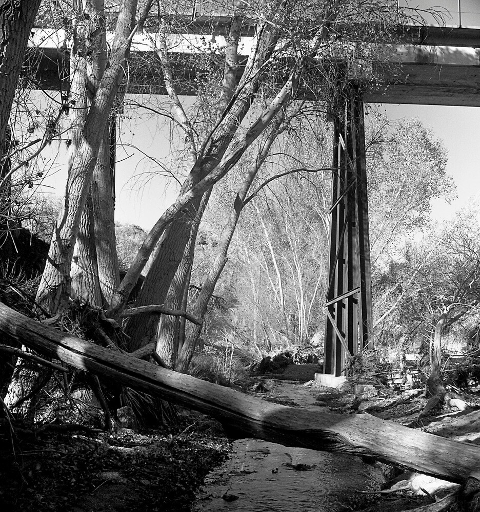 Creek Walk by James2001