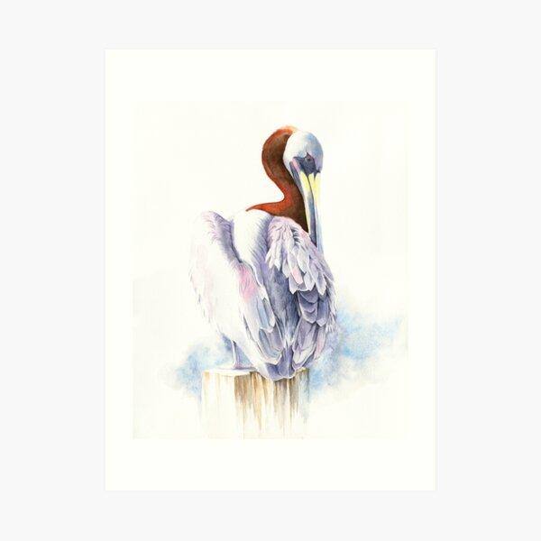 pelican watercolour portrait Art Print