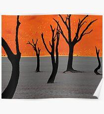 Dead Vlei Tree Skeletons Poster