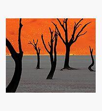 Dead Vlei Tree Skeletons Photographic Print