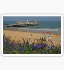 Bournemouth 'Bells Sticker
