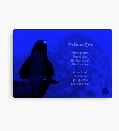 The Patient Raven Canvas Print