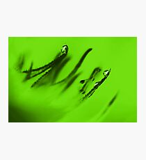 Water Droplets Abstract in Lime Green Photographic Print