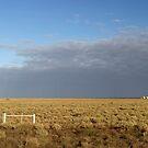 Murbko Road, South Australia by Roberts Birze