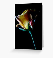 A Rose For Thee Greeting Card