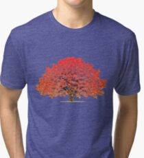 Maple Tree 1 Tri-blend T-Shirt