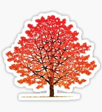 Maple tree 2 Sticker