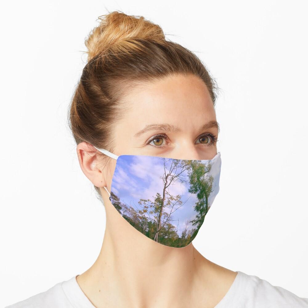 Park Mask