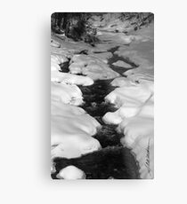 Chateauguay Stream Metal Print