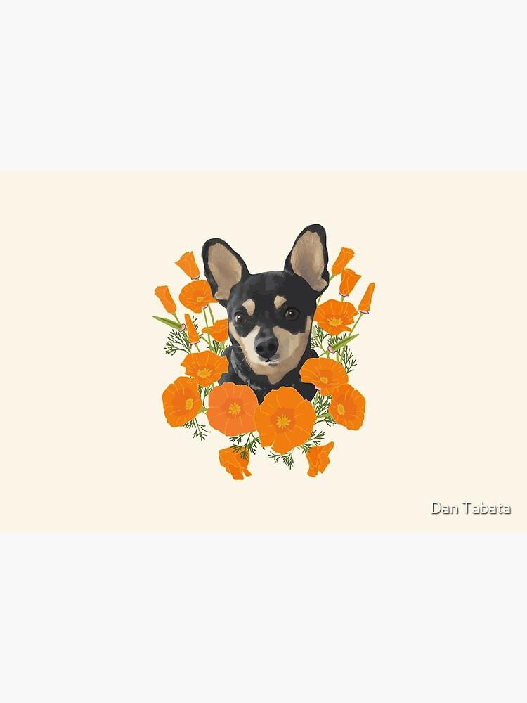Poppy Dog by dmtab
