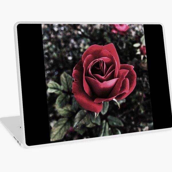 Winter Rose  Laptop Skin