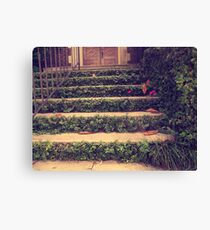He showed me the way Canvas Print