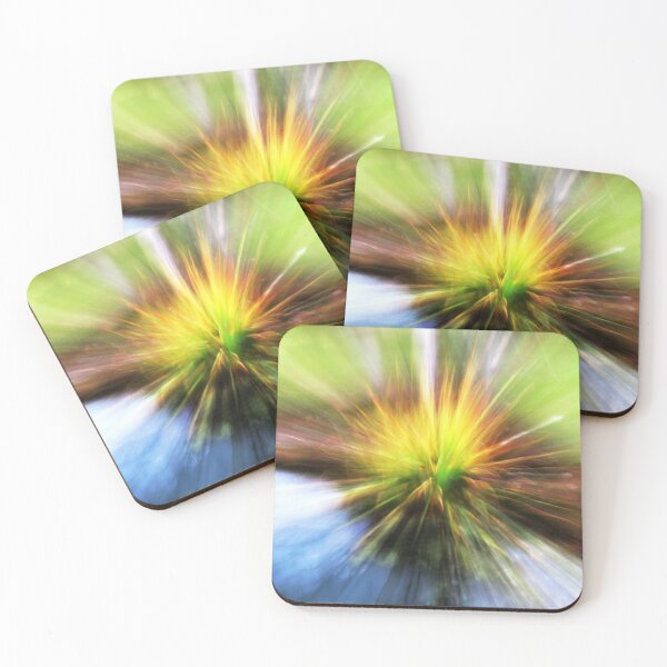 Zoom to the Trees Coasters (Set of 4)