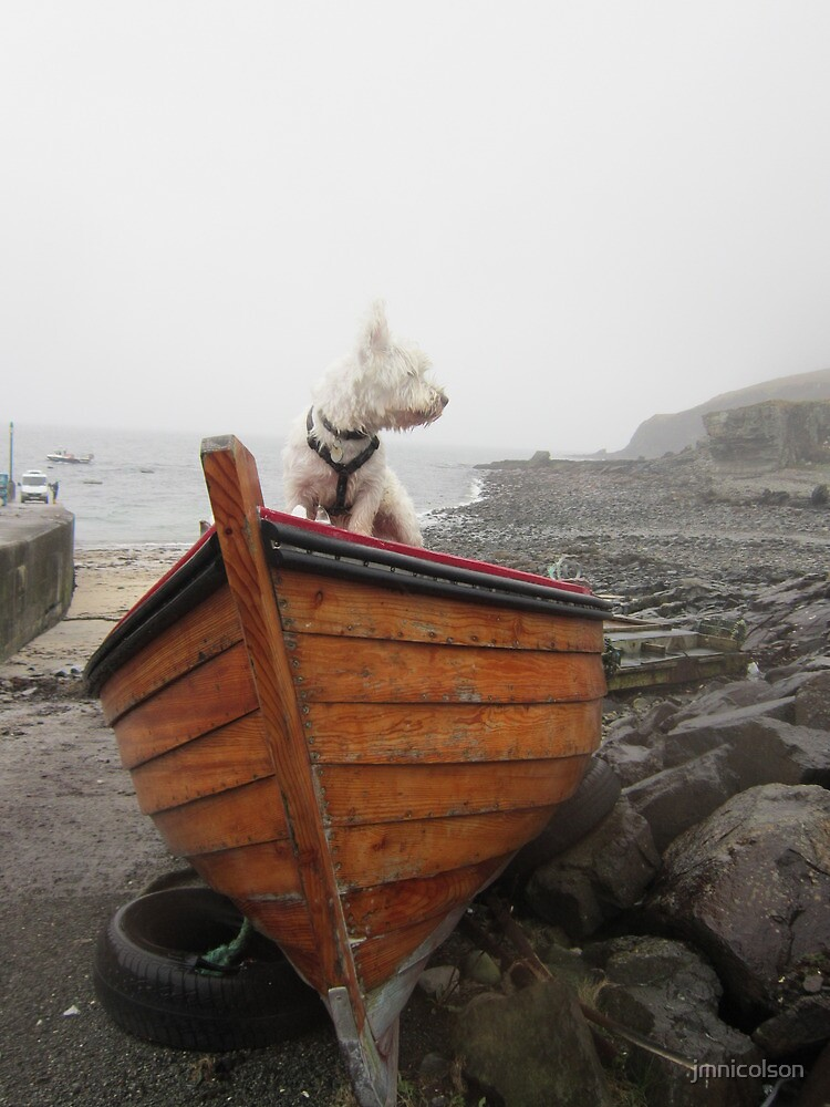 Sea dog by jmnicolson