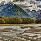 Dart River by meredithnz