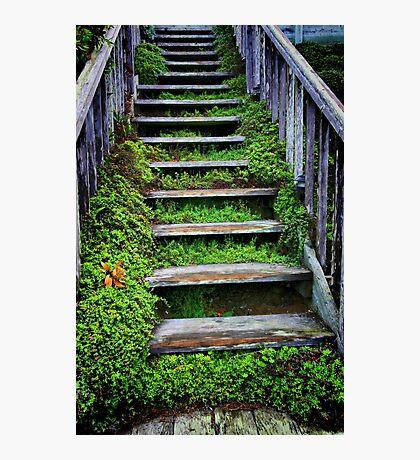 Weathered Stairway Photographic Print