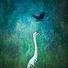 Spring swoop by Lynn Starner