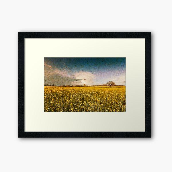 Turn of Summer Framed Art Print