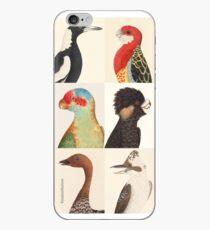 Australian birds iPhone Case