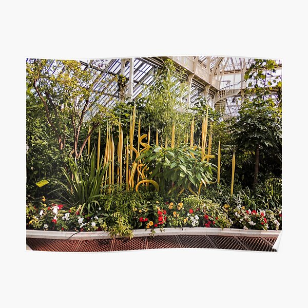 Yellow Chihuly Glass Sculptures  Poster