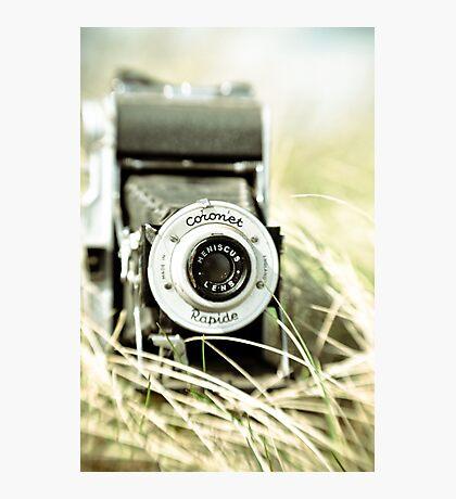 Tall, Summer Grass Photographic Print