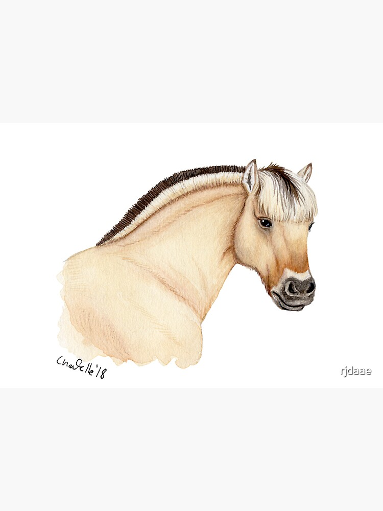 Fjord horse by rjdaae