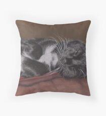 Cat Napping Throw Pillow