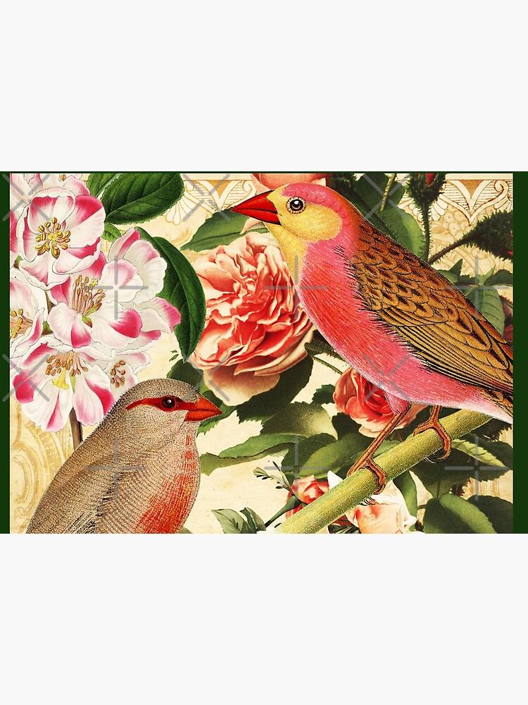 Birds and Roses by SherDigiScraps
