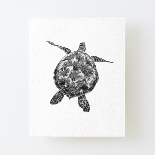 Jacki the Turtle Canvas Mounted Print