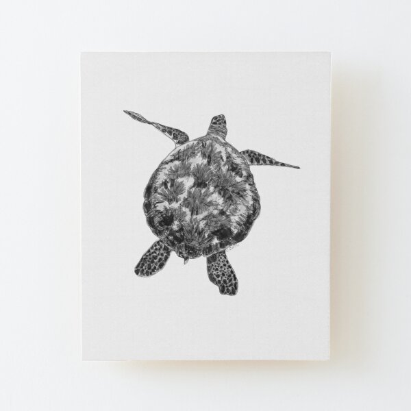 Jacki the Turtle Wood Mounted Print