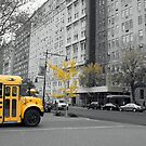 Autumn in New York by Shannyn