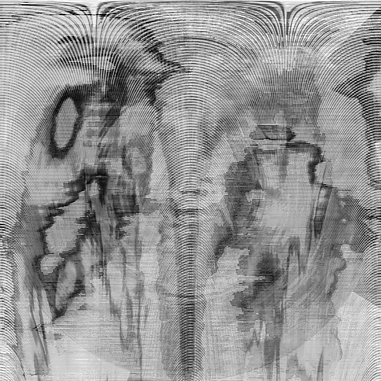 Symphony in Black and White by Benedikt Amrhein
