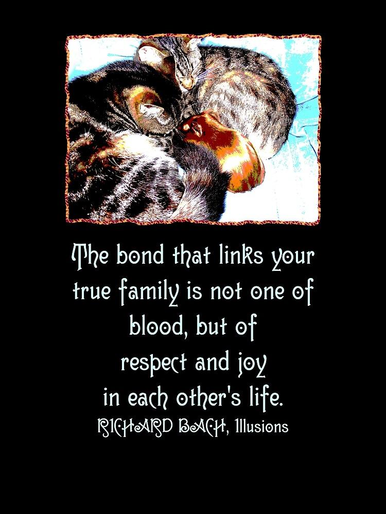 Ones True Family  by Toradellin
