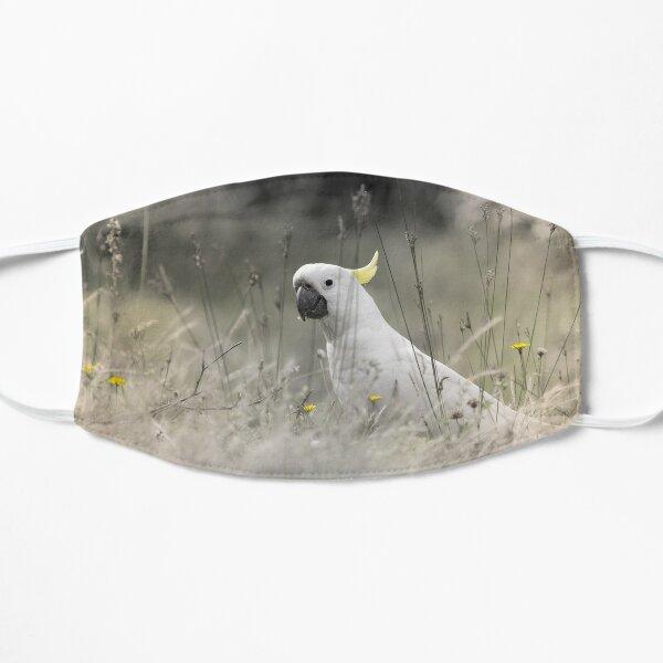 Sulphur Crested Cockatoo Mask