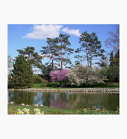 Spring Garden in Missouri Photographic Print