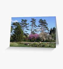 Geese in a Spring Garden Greeting Card