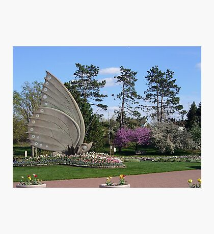 The Sophia M. Sachs Butterfly House Photographic Print