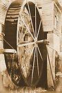wheel by Jamie McCall