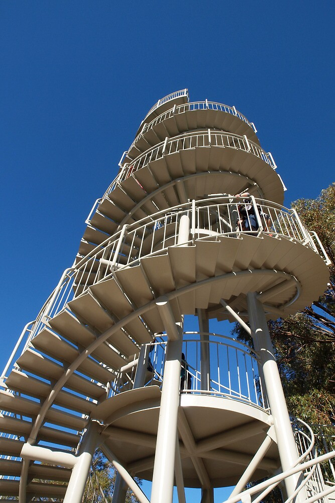An Upward Spiral by John Sharp