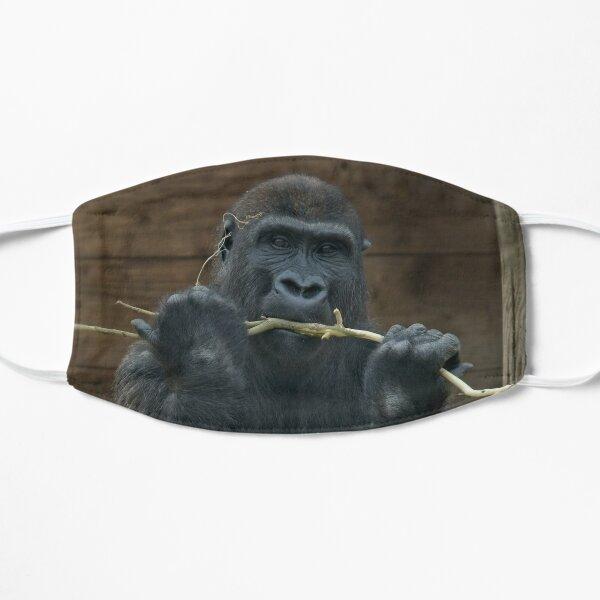 Gorilla Lope Mit Einem Stock Flache Maske