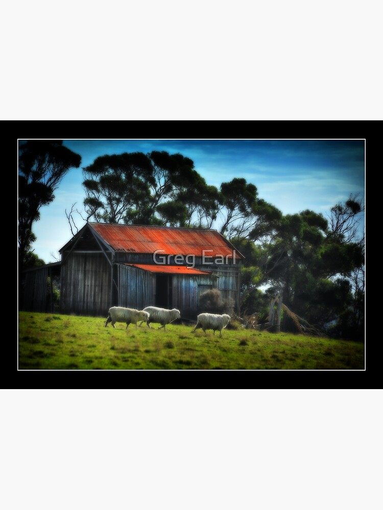 The Old Shed by GregEarl