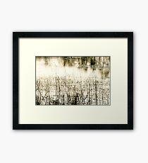 Soft......... Framed Print