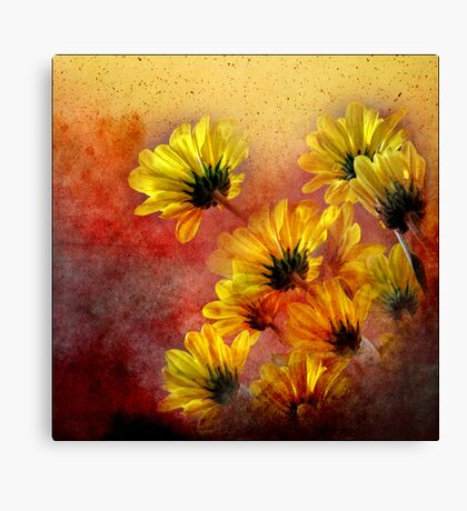 red and yellow gallimaufry  Canvas Print