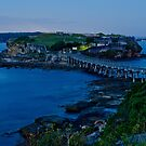 The Fort, La Perouse by Bruce Campbell
