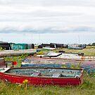 Boats A Plenty by Lynne Morris