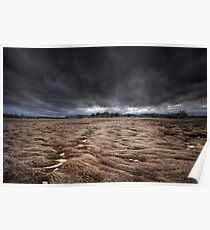 Storm Field Poster