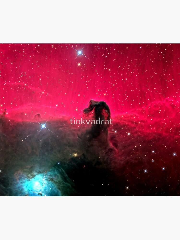 The Horsehead Nebula. by tiokvadrat