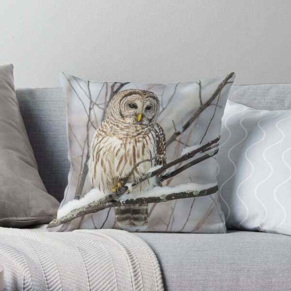 Barred Owl on  Snowy Branch Throw Pillow